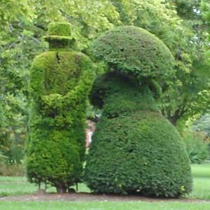 columbus_topiary_gardens-250-250-300x300